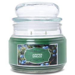 Colonial Candle medium scented Terrace jar candle Holiday 9 oz 255 g - Juniper Spruce